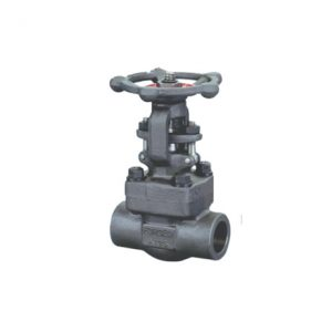 FORGED STEEL VALVE