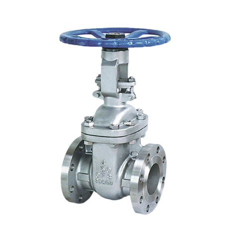 STAINLESS STEEL GATE VALVE ANSI