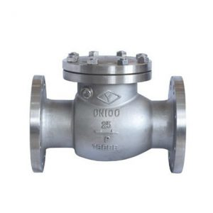 STAINLESS STEEL SWING CHECK VALVE ANSI